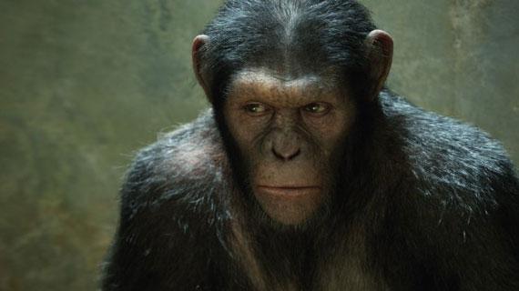 Andy Serkis' aggrieved Caesar plots ...