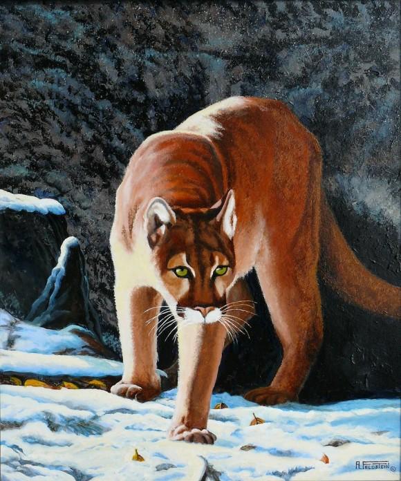 Puma_Emerging_From_Its_Den-1347133776l