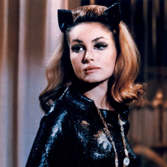 A JULIE NEWMAR Birthday Celebration