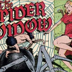 13 DAYS OF SUPER WEIRD HEROES: Spider Widow!