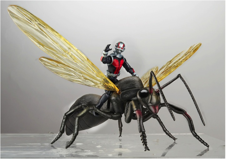 3 3/4 Ant-Man with Flying Ant. This looks GREAT!