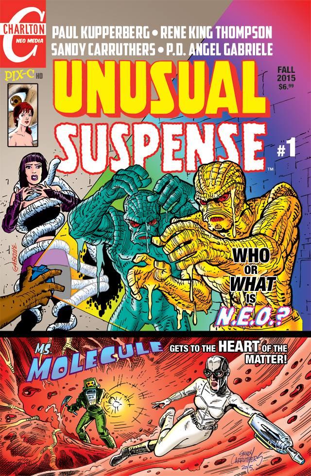 Cover of Unusual Suspense