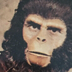SUPER-CHIMP! Dig the 13 Grooviest PLANET OF THE APES Trading Cards