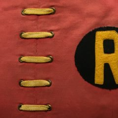 Dig This UP-CLOSE LOOK at an Original ROBIN Costume