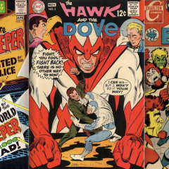 13 COVERS: The DC & Charlton Worlds of STEVE DITKO
