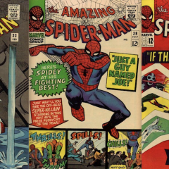 13 COVERS: SPIDER-MAN by STEVE DITKO