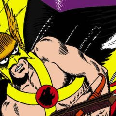 13 COVERS: A Salute to Murphy Anderson's HAWKMAN