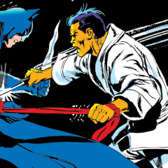 13 COVERS: BATMAN — Master of the Martial Arts